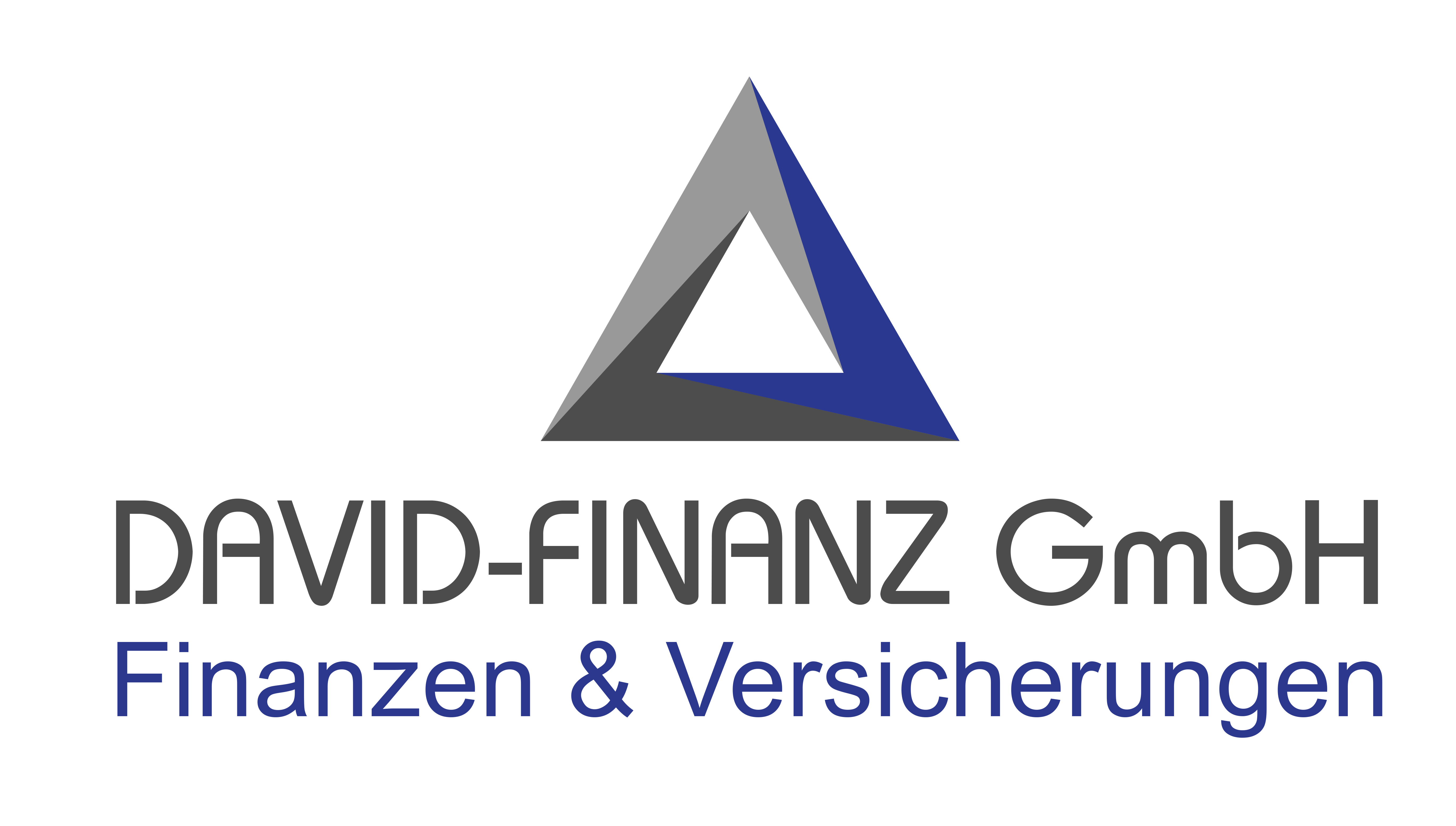 david-partner.de-Logo